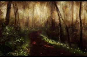 path_through_the_woods_by_elufie-d5wpqyw